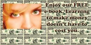 secret2dollars first wp site post image